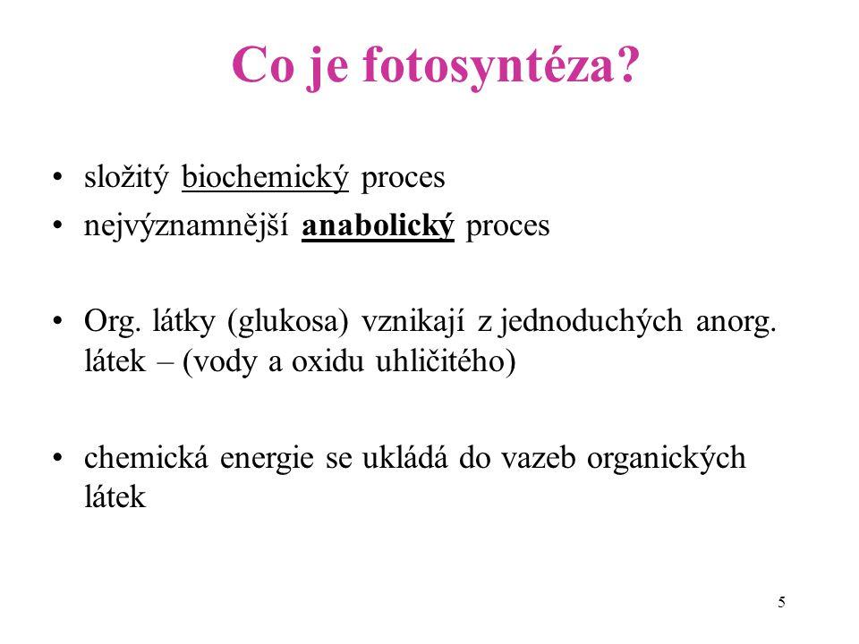 Co je fotosyntéza složitý biochemický proces