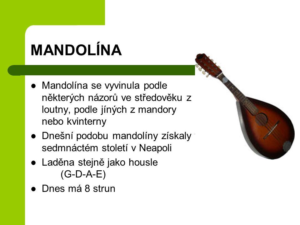 MANDOLÍNA Mandolína se vyvinula podle některých názorů ve středověku z loutny, podle jíných z mandory nebo kvinterny.