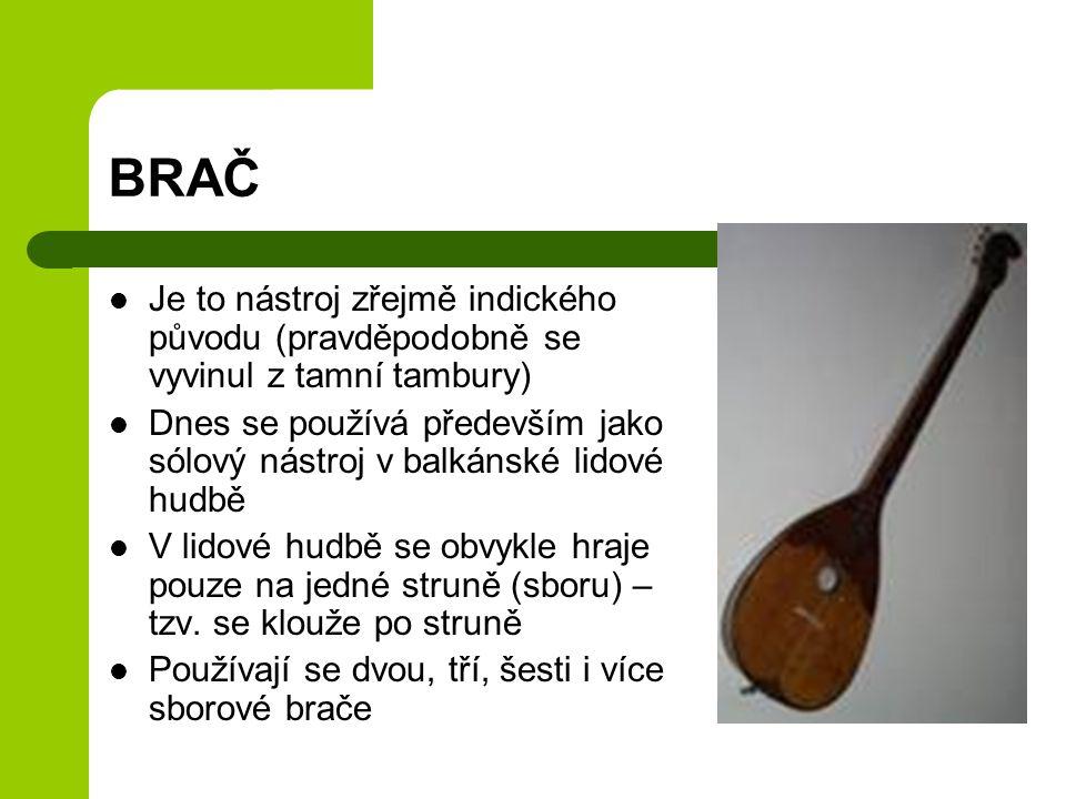 BRAČ Je to nástroj zřejmě indického původu (pravděpodobně se vyvinul z tamní tambury)