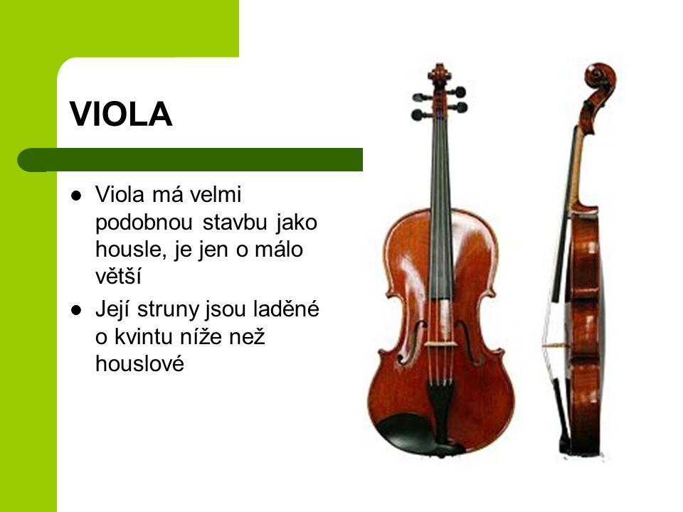 VIOLA Viola má velmi podobnou stavbu jako housle, je jen o málo větší