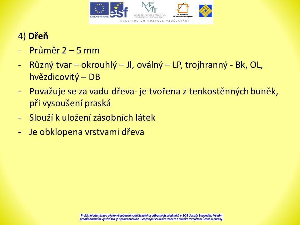 4) Dřeň Průměr 2 – 5 mm. Různý tvar – okrouhlý – Jl, oválný – LP, trojhranný - Bk, OL, hvězdicovitý – DB.