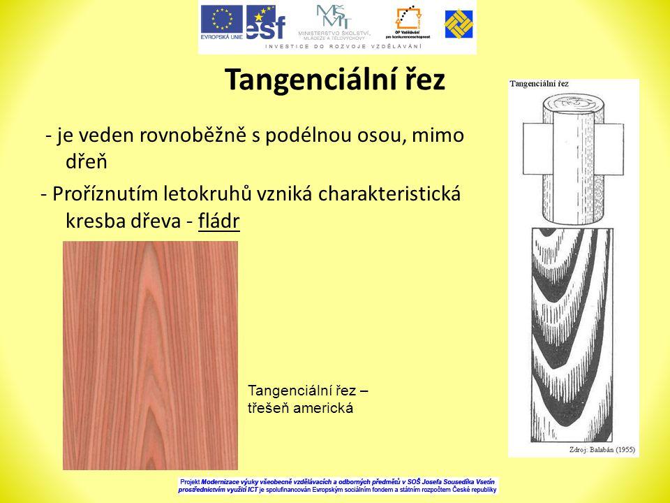Tangenciální řez - je veden rovnoběžně s podélnou osou, mimo dřeň - Proříznutím letokruhů vzniká charakteristická kresba dřeva - fládr
