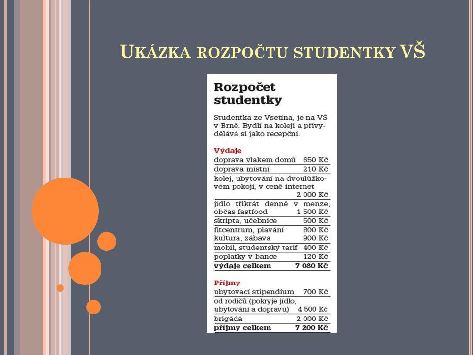 Ukázka rozpočtu studentky VŠ