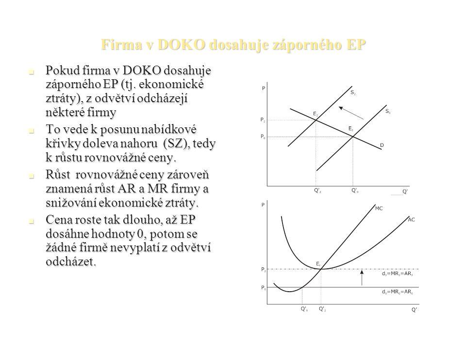 Firma v DOKO dosahuje záporného EP