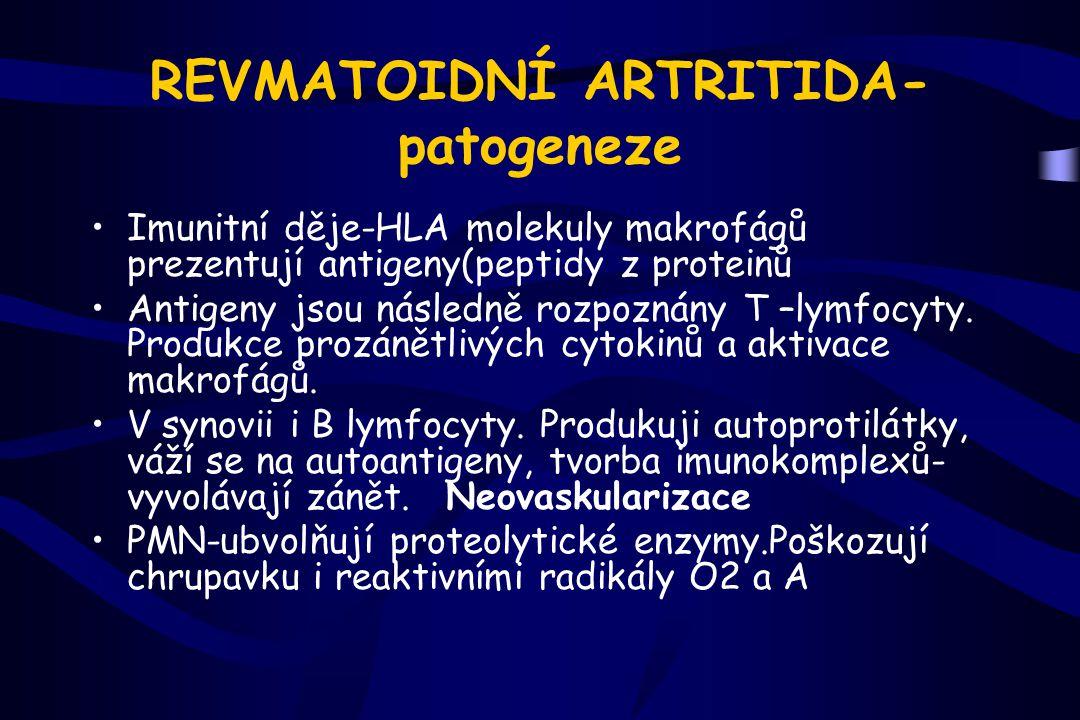 REVMATOIDNÍ ARTRITIDA-patogeneze