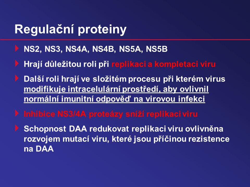 Regulační proteiny NS2, NS3, NS4A, NS4B, NS5A, NS5B