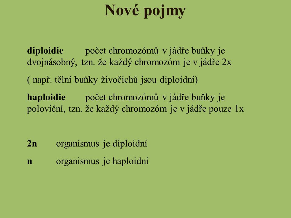 Nové pojmy diploidie počet chromozómů v jádře buňky je dvojnásobný, tzn. že každý chromozóm je v jádře 2x.