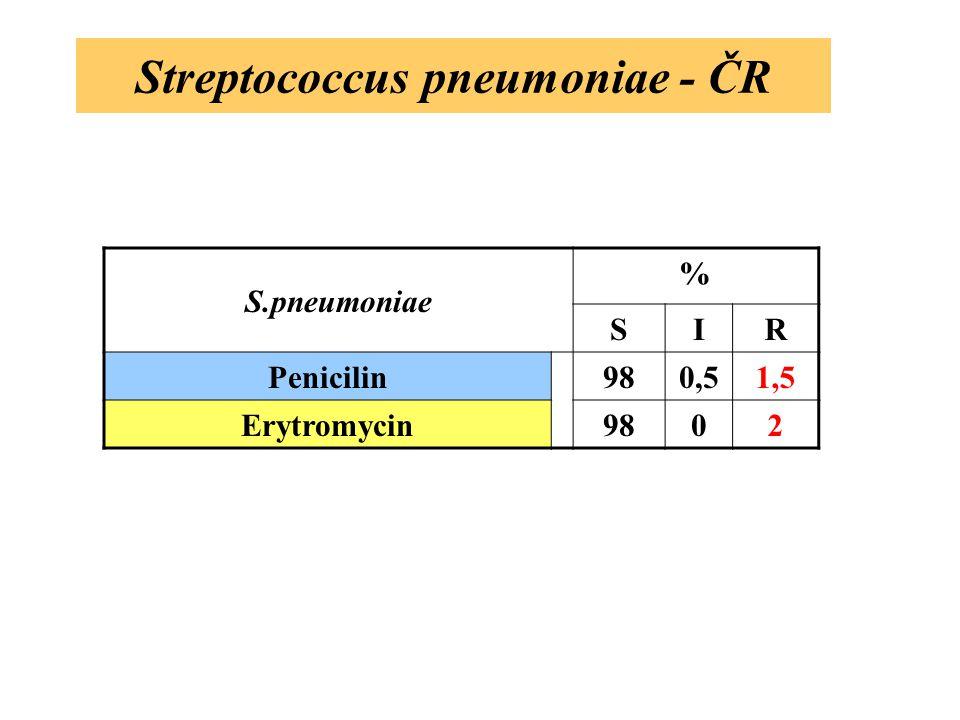 Streptococcus pneumoniae - ČR