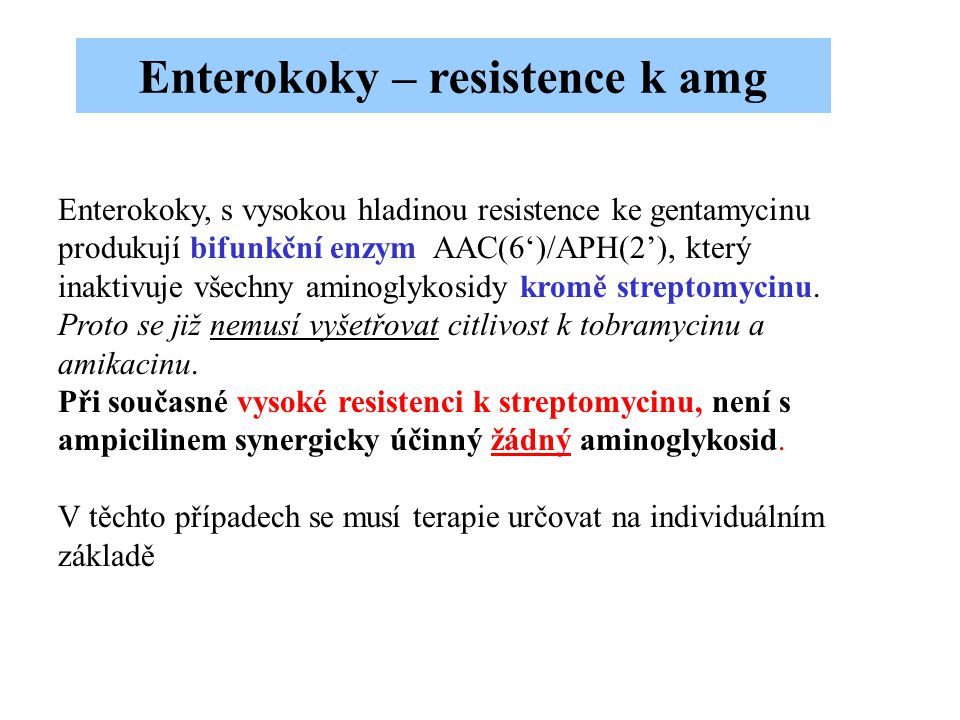 Enterokoky – resistence k amg