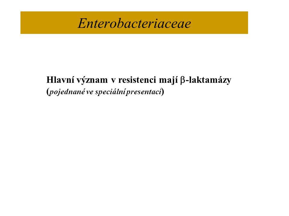 Enterobacteriaceae Hlavní význam v resistenci mají b-laktamázy
