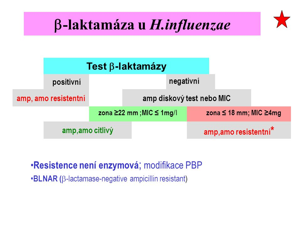 b-laktamáza u H.influenzae
