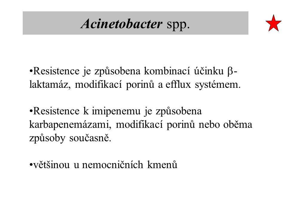 Acinetobacter spp. Resistence je způsobena kombinací účinku b-laktamáz, modifikací porinů a efflux systémem.