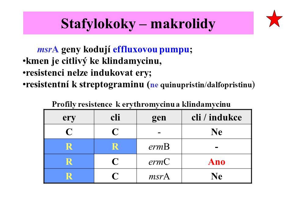 Stafylokoky – makrolidy