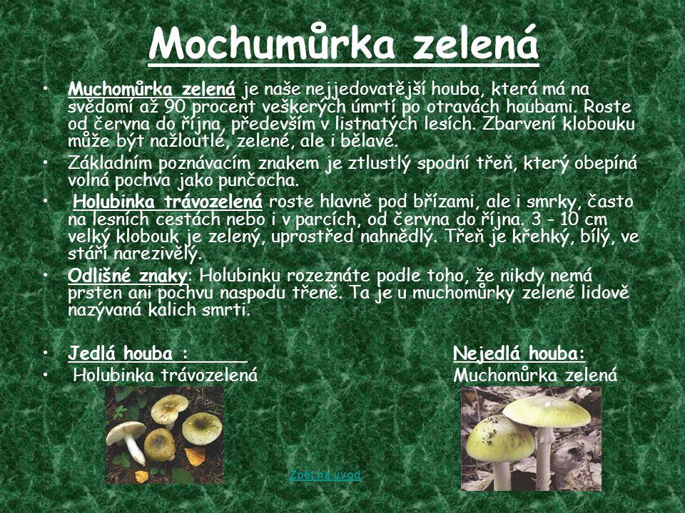 Mochumůrka zelená