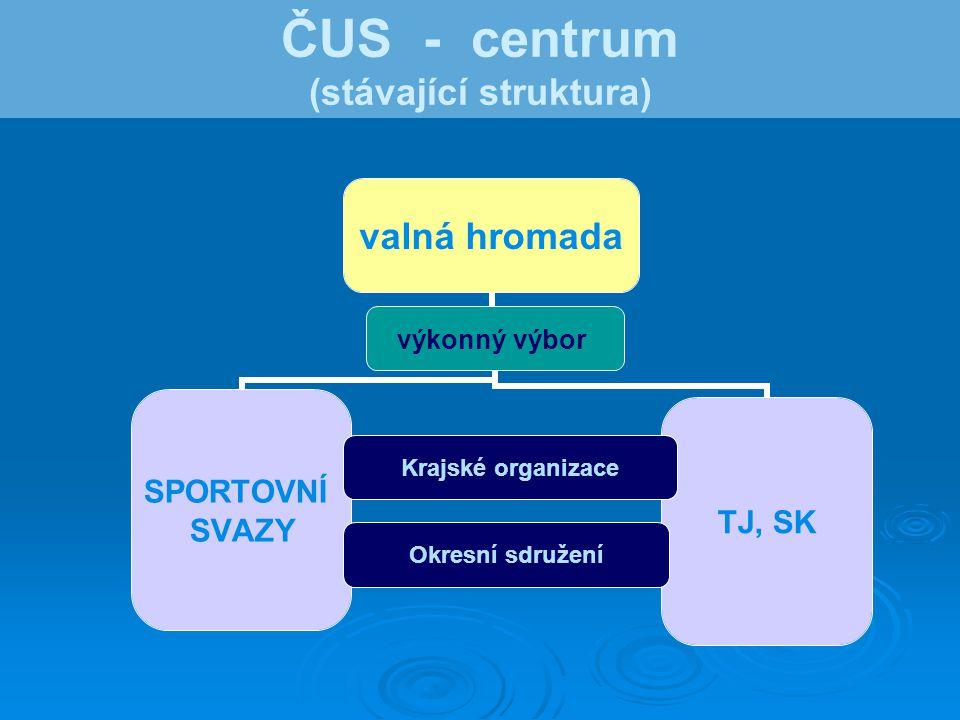 ČUS - centrum (stávající struktura)