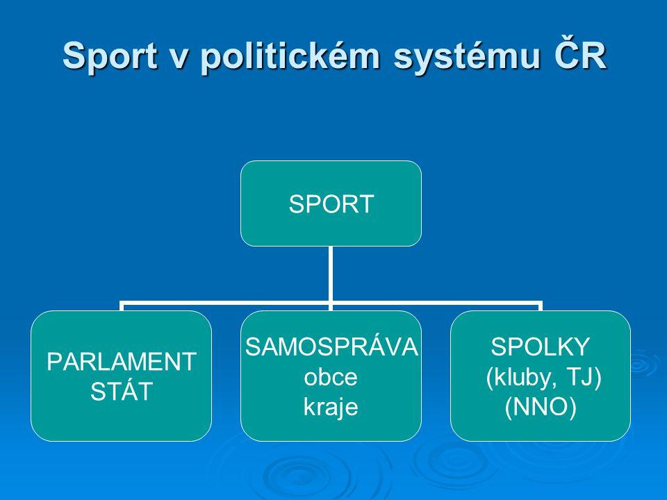 Sport v politickém systému ČR