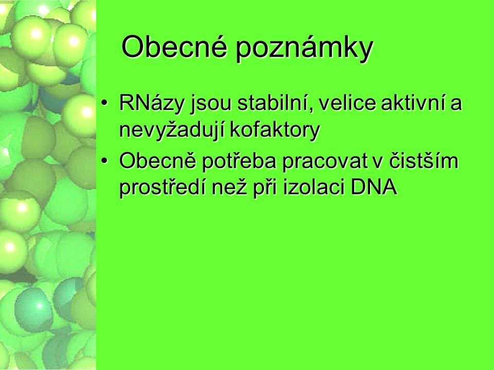 Obecné poznámky RNázy jsou stabilní, velice aktivní a nevyžadují kofaktory.