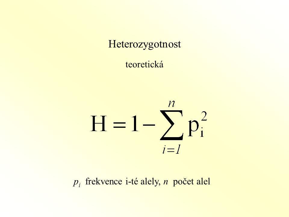 Heterozygotnost teoretická