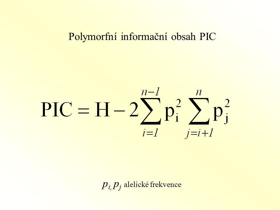 Polymorfní informační obsah PIC