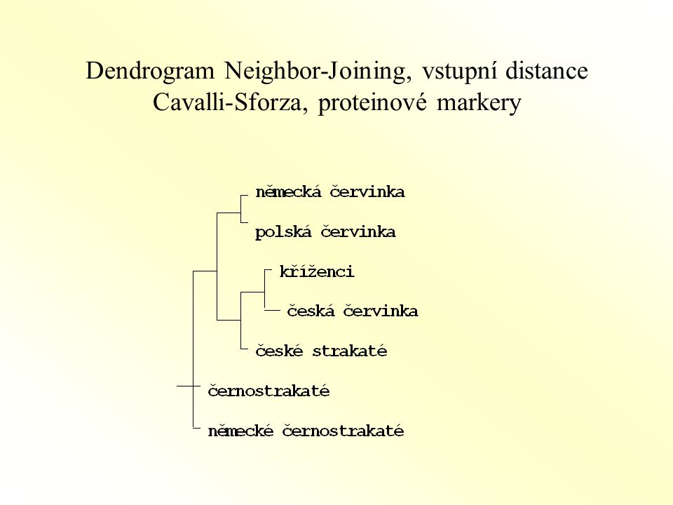 Dendrogram Neighbor-Joining, vstupní distance Cavalli-Sforza, proteinové markery