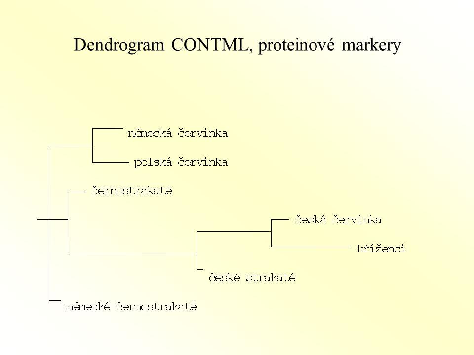 Dendrogram CONTML, proteinové markery
