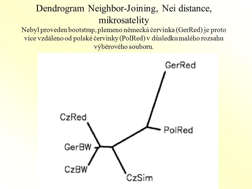 Dendrogram Neighbor-Joining, Nei distance, mikrosatelity Nebyl proveden bootstrap, plemeno německá červinka (GerRed) je proto více vzdáleno od polské červinky (PolRed) v důsledku malého rozsahu výběrového souboru.