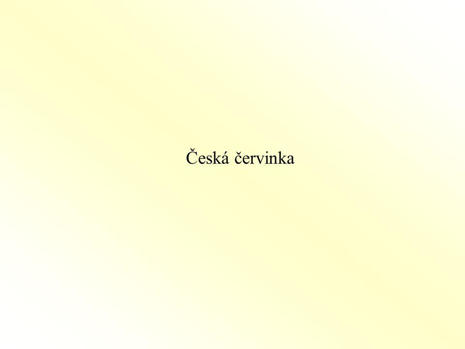 Česká červinka