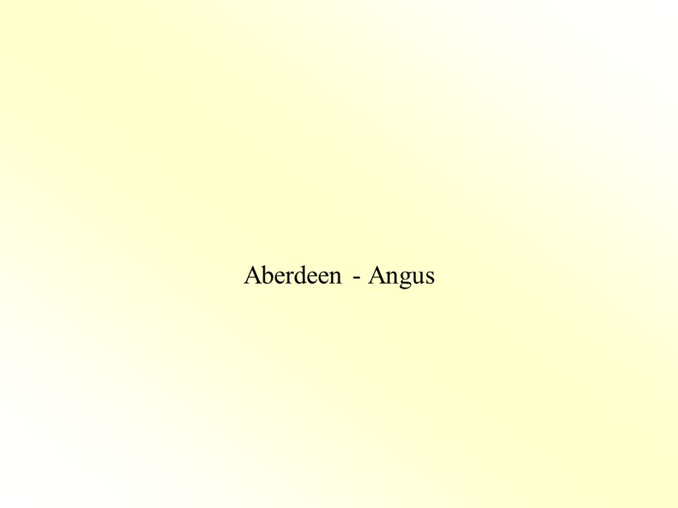 Aberdeen - Angus