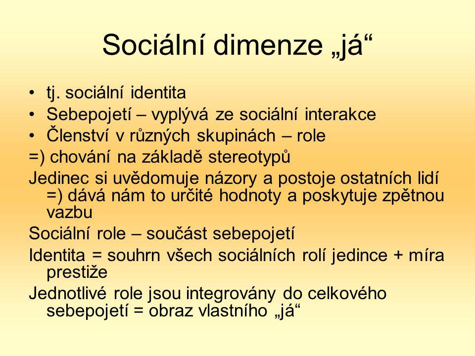 """Sociální dimenze """"já tj. sociální identita"""