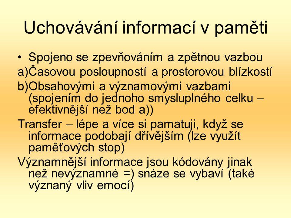 Uchovávání informací v paměti