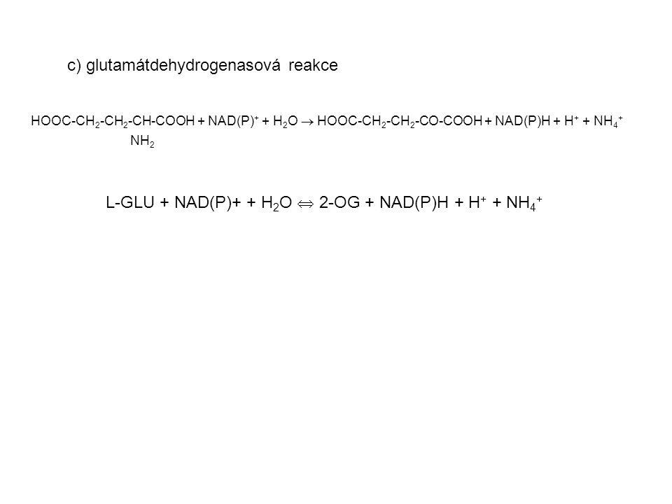 L-GLU + NAD(P)+ + H2O  2-OG + NAD(P)H + H+ + NH4+
