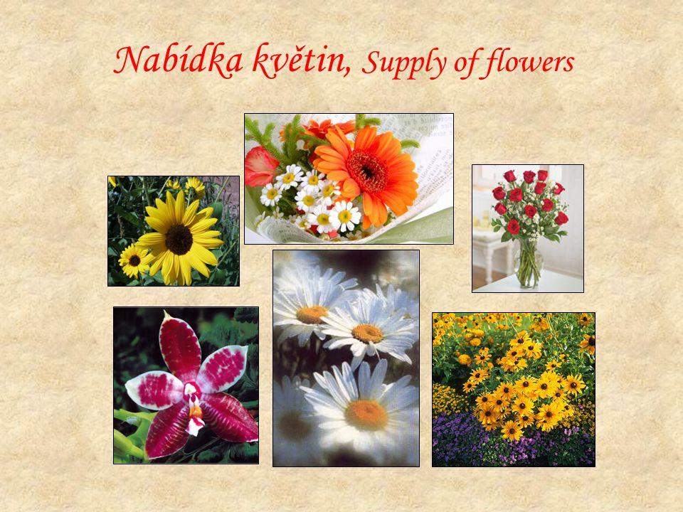 Nabídka květin, Supply of flowers