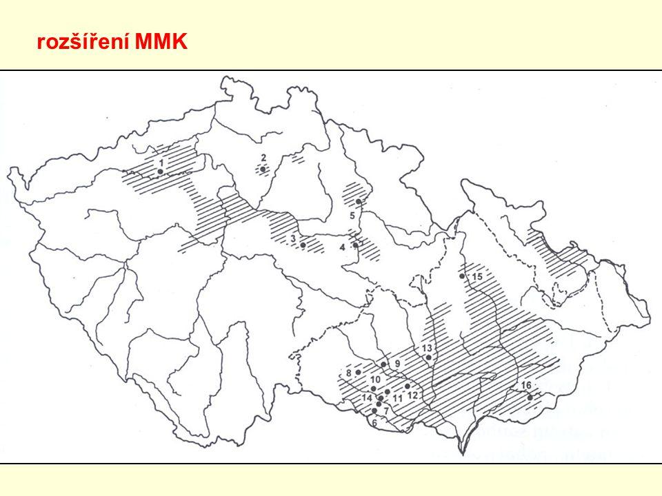 rozšíření MMK