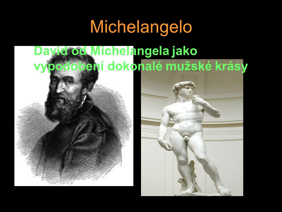Michelangelo David od Michelangela jako vypodobení dokonalé mužské krásy