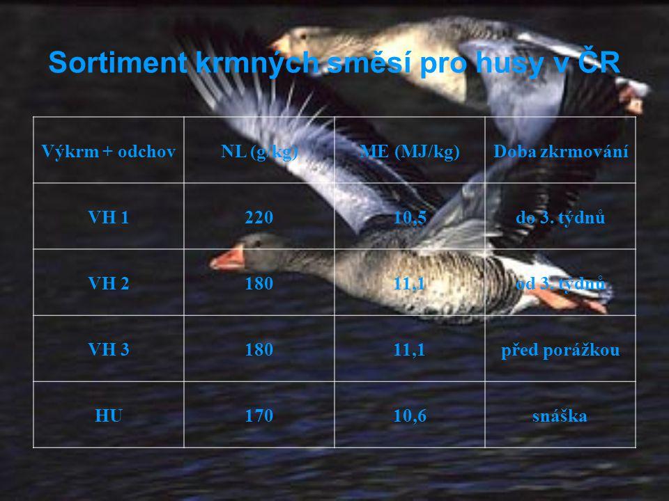 Sortiment krmných směsí pro husy v ČR