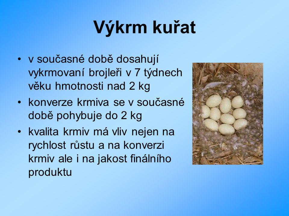 Výkrm kuřat v současné době dosahují vykrmovaní brojleři v 7 týdnech věku hmotnosti nad 2 kg. konverze krmiva se v současné době pohybuje do 2 kg.