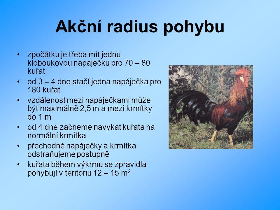 Akční radius pohybu zpočátku je třeba mít jednu kloboukovou napáječku pro 70 – 80 kuřat. od 3 – 4 dne stačí jedna napáječka pro 180 kuřat.