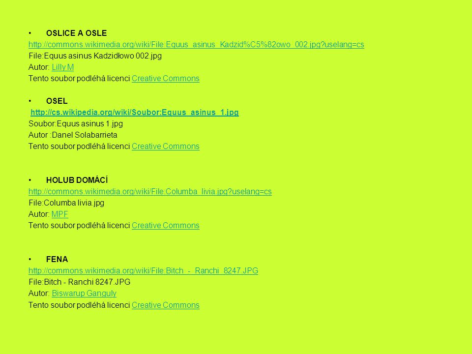 OSLICE A OSLE http://commons.wikimedia.org/wiki/File:Equus_asinus_Kadzid%C5%82owo_002.jpg?uselang=cs.