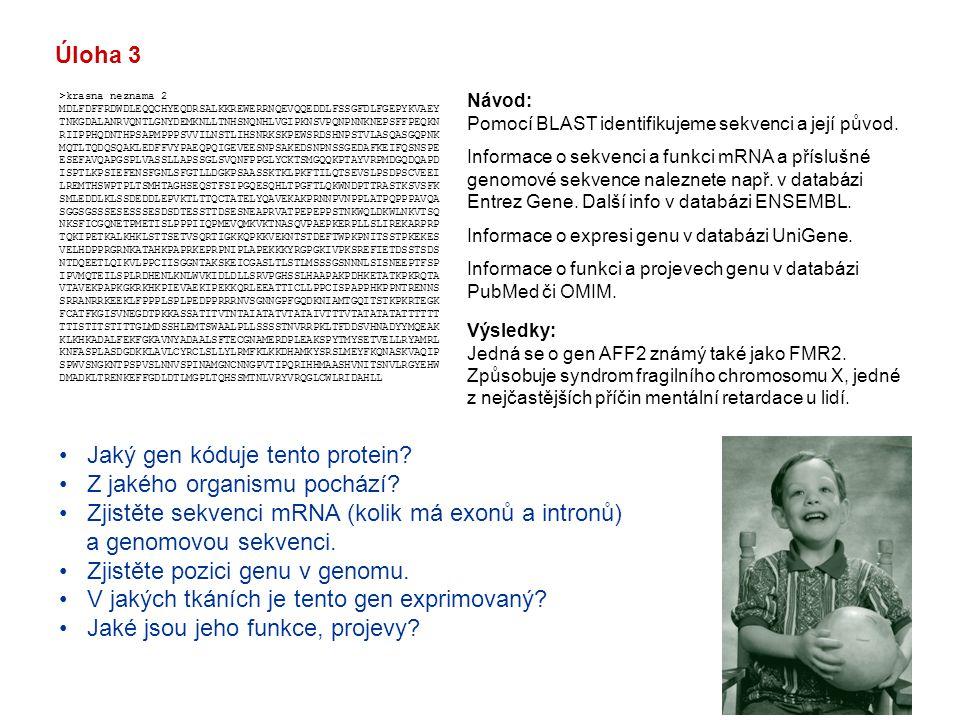 Jaký gen kóduje tento protein Z jakého organismu pochází