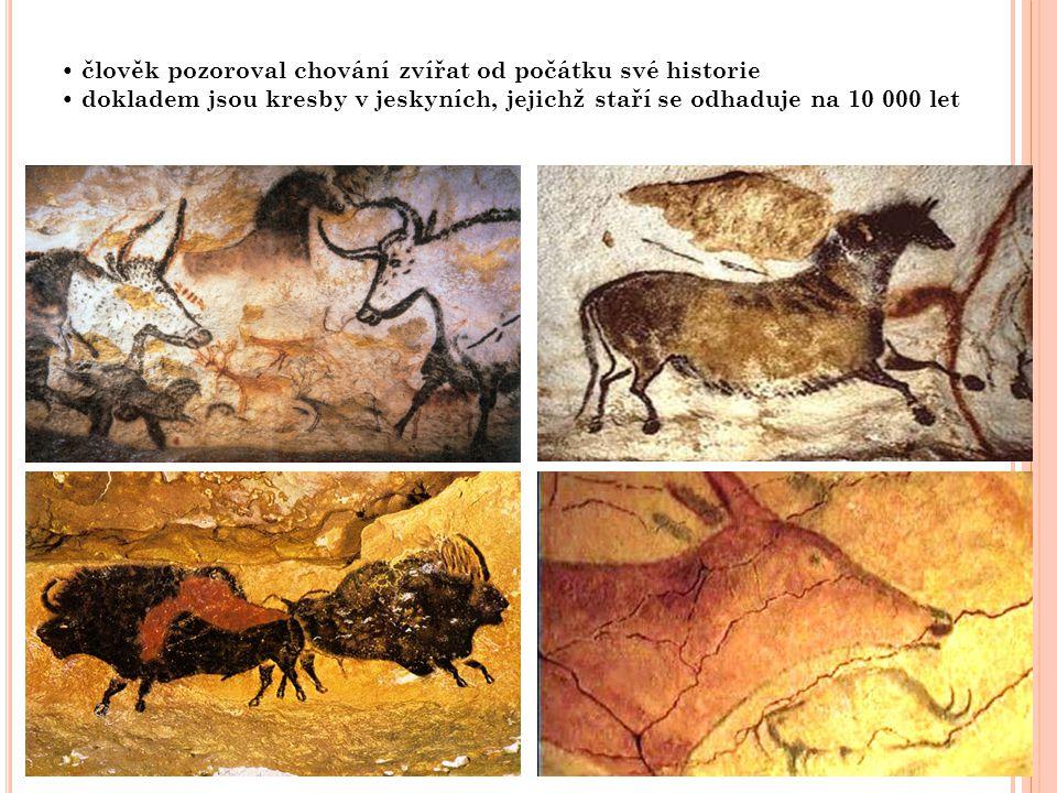• člověk pozoroval chování zvířat od počátku své historie