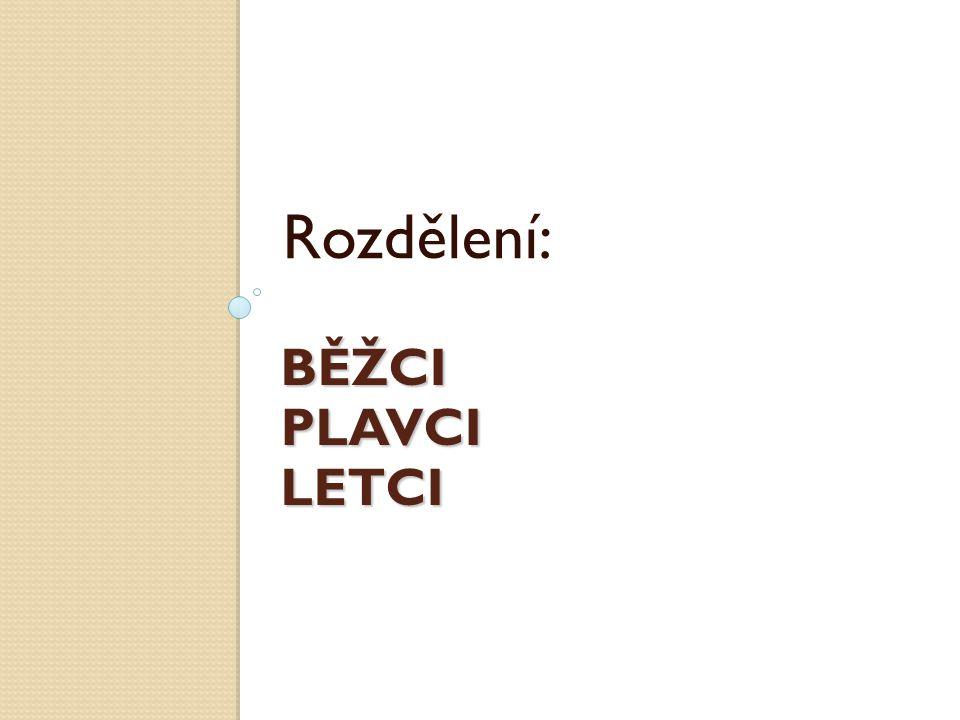 Rozdělení: BĚŽCI PLAVCI LETCI