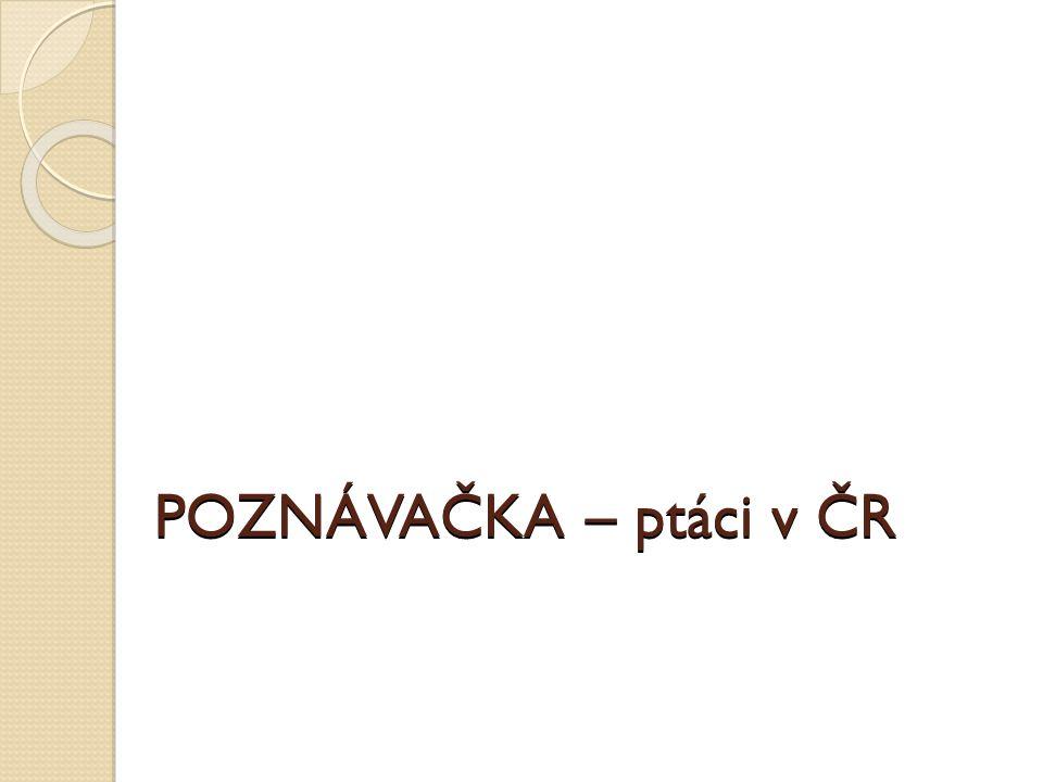 POZNÁVAČKA – ptáci v ČR