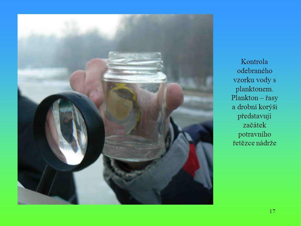 Kontrola odebraného vzorku vody s planktonem