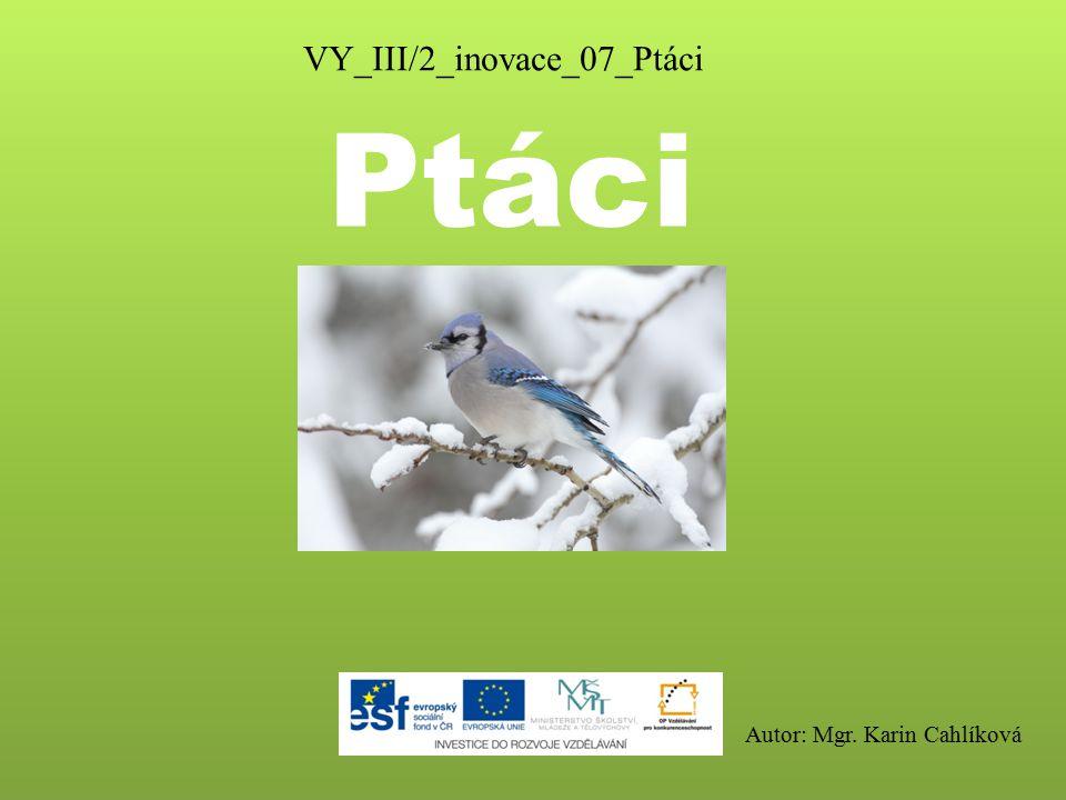VY_III/2_inovace_07_Ptáci