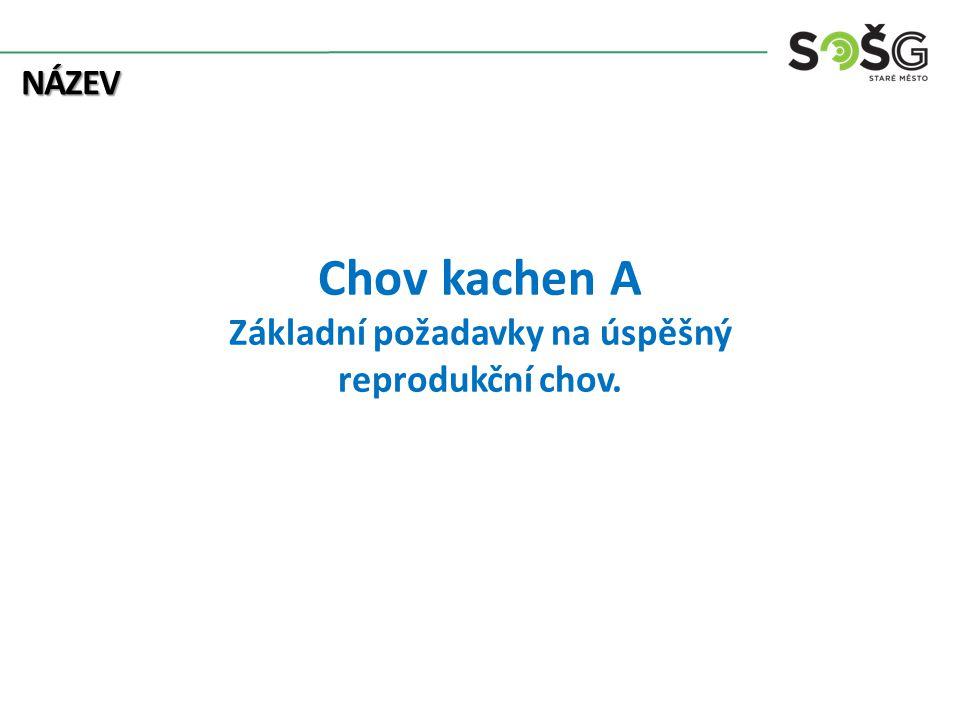 Chov kachen A Základní požadavky na úspěšný reprodukční chov.