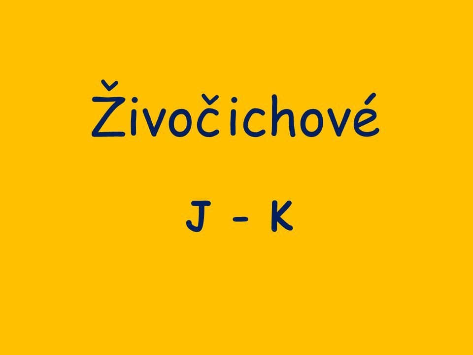 Živočichové J - K