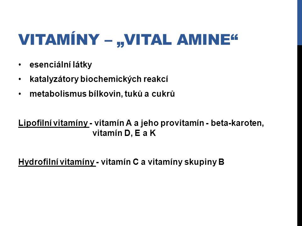"""Vitamíny – """"vital amine"""
