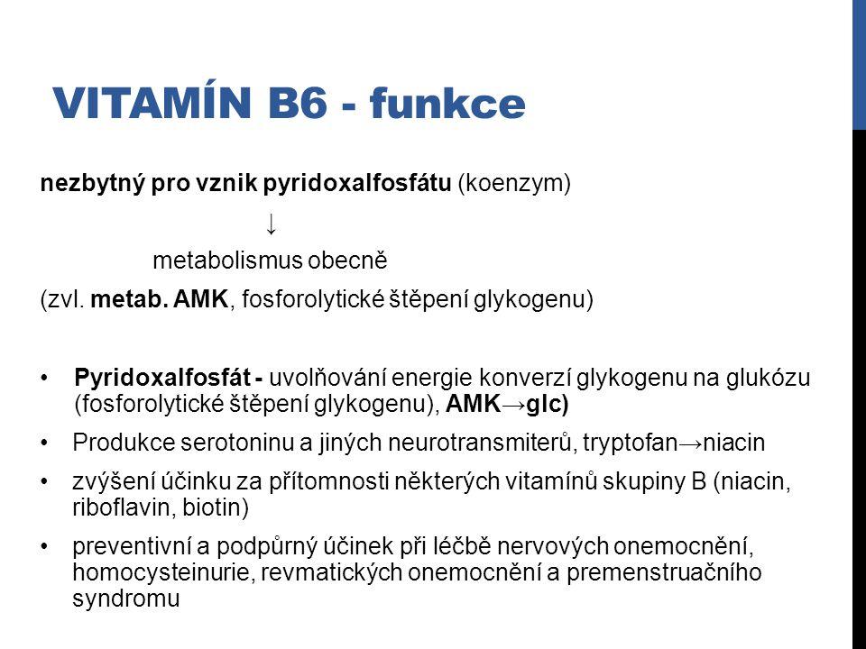 Vitamín B6 - funkce nezbytný pro vznik pyridoxalfosfátu (koenzym) ↓