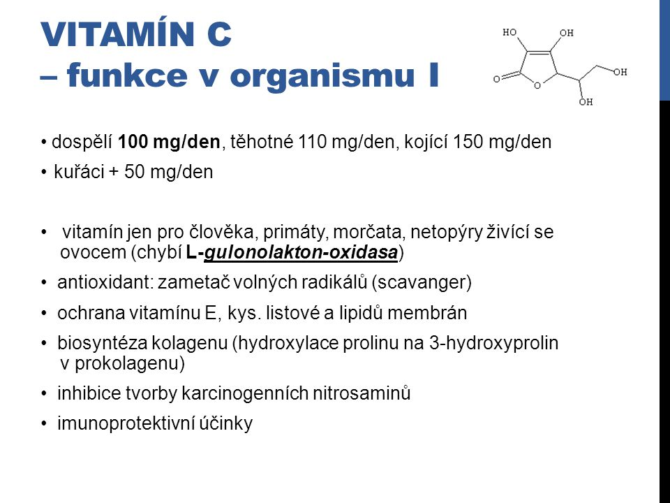 VitamÍn C – funkce v organismu I