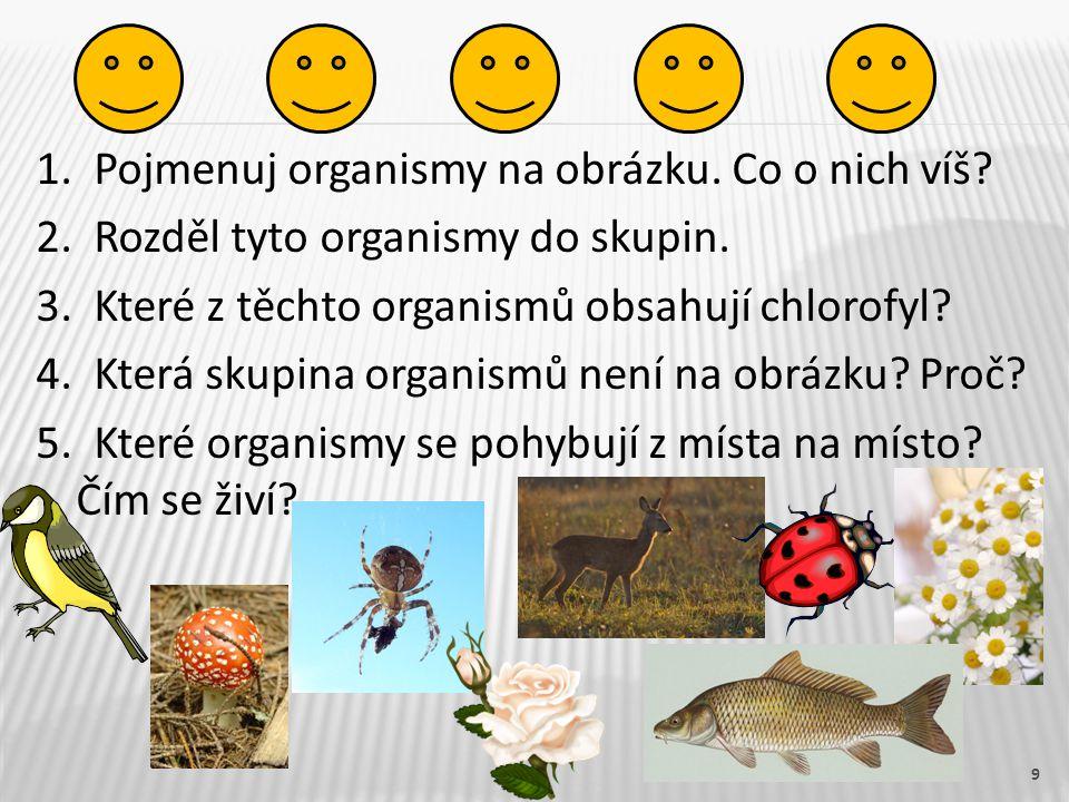 1. Pojmenuj organismy na obrázku. Co o nich víš. 2